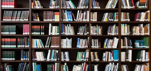 ePortfolio Literatur CC0 Public Domain
