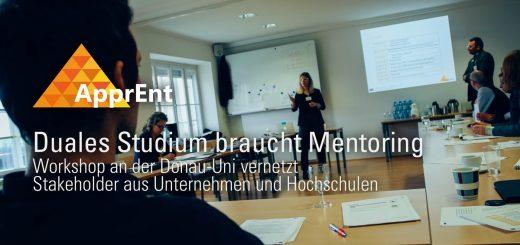 ApprEnt Workshop Mentoring