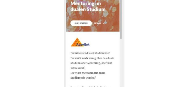 Mini-Onlinekurs Duales Studium und Mentoring