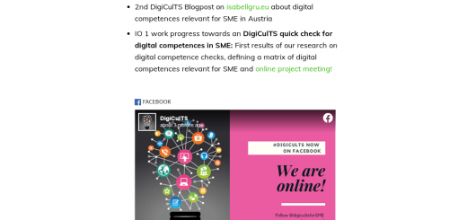 Digicults Project Progress Portfolio